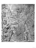 Winged Genie Worshipping the Sacred Tree, from the Palace at Nimrud