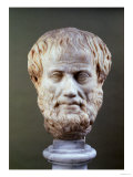 Marble Head of Aristotle (384-322 BC )