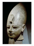 Colossal Head of Amenhotep III, from Al-Qurnah, New Kingdom (Pink Granite)