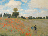 Wild Poppies, Near Argenteuil (Les Coquelicots: Environs D'Argenteuil), 1873 Giclee Print