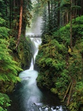 Sol Duc Falls Cascading Through Rainforest Photographic Print