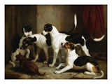 The Puckeridge Foxhounds Rantipole, Rummager, Racer, and Reveller