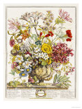 Hand Colored Engraving of Bouquet- October, 1730 Art Print
