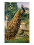 Peacocks in the Park, 1886 Art Print