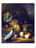 A Parrot with Grapes, Peaches and Plums in a Landscape