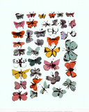 Butterflies, 1955