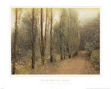 Hazelwood Trail Art Print