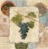 Wine Grapes I