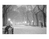 Literary Walk Snowstorm - Central Park, New York Photographic Print