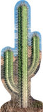 Cactus Cardboard Cutouts