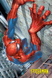 Spider-Man - Climbing Poster