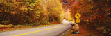 Autumn Road with Bear at Deer Crossing Sign, Vermont, USA