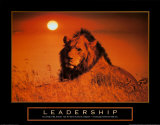 Leadership: Lion Art Print