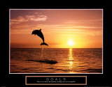 Buy Goals: Dolphins at AllPosters.com