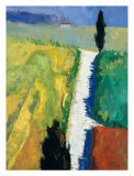 Tuscan Field II