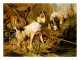 Two Smooth-Haired Fox Terriers by a Fishing Rod and a Creel on a Riverbank