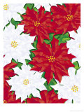 Poinsettia Pattern