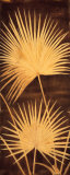 Fan Palm Triptych II