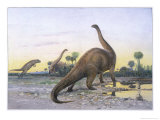 Brontosaurus Attacked by Allosaurus