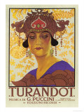 Portrait of Princess Turandot