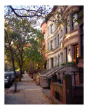 Trees and Brownstones Grow in Brooklyn Photographic Print