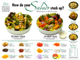 Salads Comparative Laminated Poster