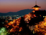 Main Hall, Sakura Trees and Pagoda Lit Up at Night at Kiyomizu-Dera Temple, Kyoto, Japan