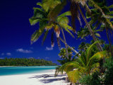 Beach with Palm Trees on Island in Aitutaki Lagoon,Aitutaki,Southern Group, Cook Islands