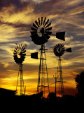 Windmills at Sunset in Penong, Australia