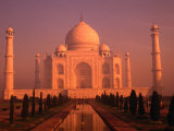 Taj Mahal Glows at Sunrise, Agra, Uttar Pradesh, India