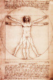 Buy Vitruvian Man at AllPosters.com