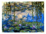 Waterlilies, 1916-1919