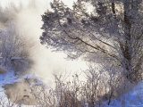 Buy Early Morning Winter Frost Near River, Wisconsin, USA at AllPosters.com