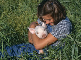 Girl Holding Domestic Piglet, Mixed Breed, USA