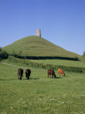 Buy Glastonbury Tor, Somerset, England, United Kingdom at AllPosters.com