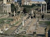 Buy Roman Forum, Rome, Lazio, Italy at AllPosters.com