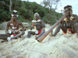 Three Aborigines Playing Musical Instruments, Northern Territory, Australia