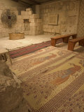 Floor Mosaics, Moses Memorial Church, Mount Nebo, East Bank Plateau, Jordan, Middle East