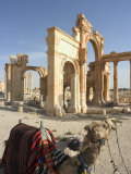 Tourist Camel Ride, Monumental Arch, Archaelogical Ruins, UNESCO World Heritage Site, Syria