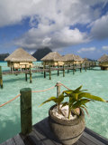Pearl Beach Resort, Bora-Bora, Leeward Group, Society Islands, French Polynesia