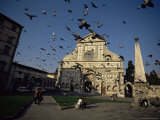 Buy Pigeons in Flight in the Piazza Santa Maria Novella, Florence, Tuscany, Italy at AllPosters.com