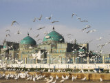 The Famous White Pigeons, Shrine of Hazrat Ali, Mazar-I-Sharif, Balkh Province, Afghanistan
