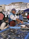 Fish Market, Vieux Port, Marseille, Bouches Du Rhone, Provence, France