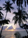 Buy Sunset Framed by Palms, Patong, Phuket, Thailand, Southeast Asia, Aisa at AllPosters.com