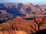 Grand Canyon from South Rim Near Yavapai Point, Grand Canyon National Park, Arizona Photographic Print