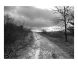 Gravel Journey BW Photographic Print