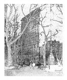 Madison Square Park Photographic Print