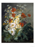 Still Life of Daisies and Poppies