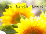 Live Laugh Love: Sunflower Words to Live By: Love Live Laugh Love Live Love Laugh Peel & Stick Wall Decals Live Well-Love Often-Love Much Peel & Stick Single Sheet Live, Love and Laugh Live Laugh Love (gold foil) Live Every Moment