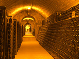 Underground Wine Cellar, Champagne Francois Seconde, Sillery Grand Cru